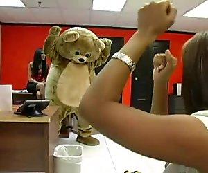 Mies pukeutunut karhu / iso karvainen homomies kävelee toimisto paikkaan ja vittu naisia